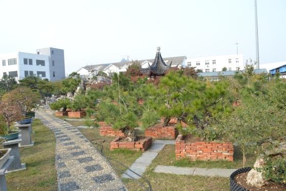 Suzhou 671